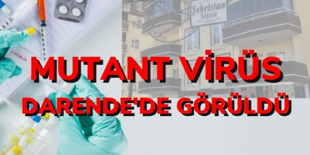 Korkulan Oldu! Mutant Virüs Darende'de Görüldü!
